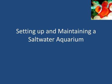 Setting up and Maintaining a Saltwater Aquarium. Setting Up Aquarium Step 1: Prepare the aquarium – Clean tank and all equipment with sponge; no detergent.