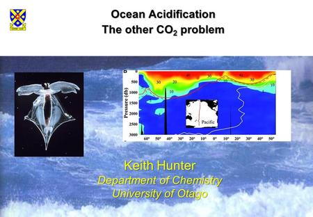 Ocean Acidification The other CO 2 problem Keith Hunter Department of Chemistry University of Otago.