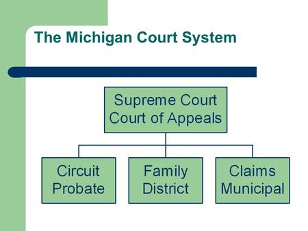 The Michigan Court System. Criminal vs. Civil Civil Law Tort: an offense against an individual A private party (e.g., a corporation or individual person)