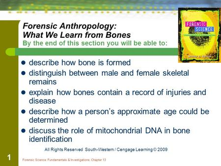 Forensic Science: Fundamentals & Investigations, Chapter 13 1 Forensic Anthropology: What We Learn from Bones By the end of this section you will be able.