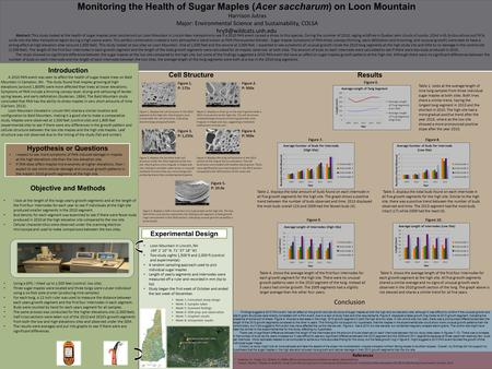 Monitoring the Health of Sugar Maples (Acer saccharum) on Loon Mountain Harrison Jutras Major: Environmental Science and Sustainability, COLSA