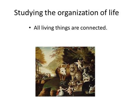 Studying the organization of life All living things are connected.