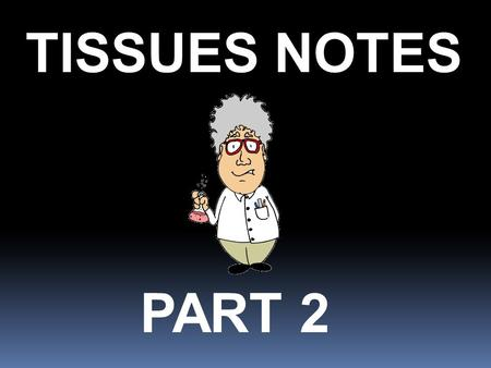 TISSUES NOTES PART 2. List the body organization terms in the correct order. The correct order of body organization is: atoms – molecules – cells – tissues.
