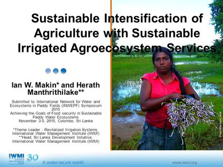 Photo :Nico Sepe / IWMI Sustainable Intensification of Agriculture with Sustainable Irrigated Agroecosystem Services Ian W. Makin* and Herath Manthrithilake**