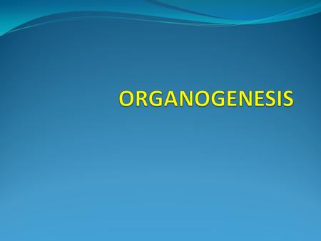 ORGANOGENESIS Plant regeneration by tissue culture techniques can be achieved by either zygotic embryo culture, somatic embryogenesis, or organogenesis.