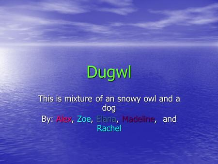 Dugwl This is mixture of an snowy owl and a dog By: Alex, Zoe, Elana, Madeline, and Rachel.