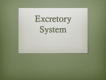 Excretory System.  This system removes wastes from the body. Some animals remove excess water, salt, and other waste through their skin in the form of.