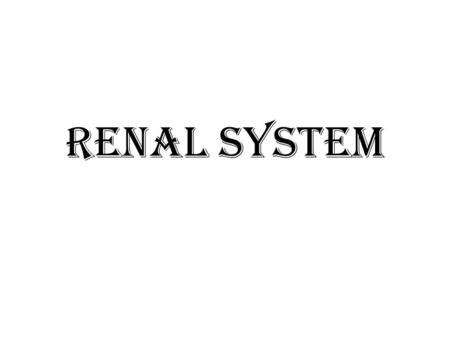 Renal system. Urogenital System Functions  Filtering of blood, Removal of wastes and metabolites  Regulation of – blood volume and composition – blood.