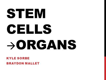 stem cells good bad and ugly essay The good the bad and the ugly of glycosaminoglycans in tissue engineering   stem cell glycobiology group, wolfson centre for stem cells,.