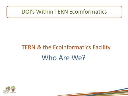TERN & the Ecoinformatics Facility Who Are We? DOI's Within TERN Ecoinformatics.