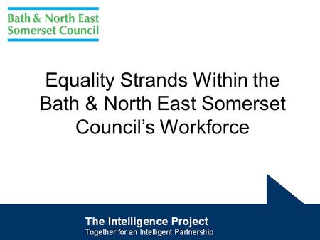 Equality Strands Within the Bath & North East Somerset Council's Workforce.