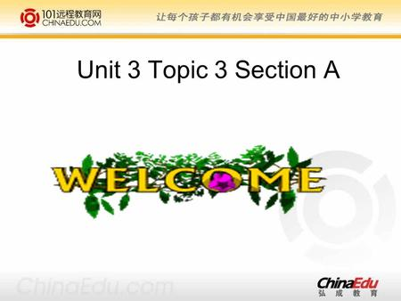 Unit 3 Topic 3 Section A. Teaching aims and demands: 1. Learn some useful words and expressions: sleepy, final, at times, give up, grammar, whom 2.Learn.