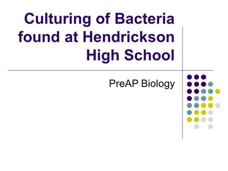 Culturing of Bacteria found at Hendrickson High School PreAP Biology.