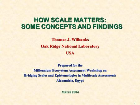 1 HOW SCALE MATTERS: SOME CONCEPTS AND FINDINGS Thomas J. Wilbanks Oak Ridge National Laboratory USA Prepared for the Millennium Ecosystem Assessment Workshop.