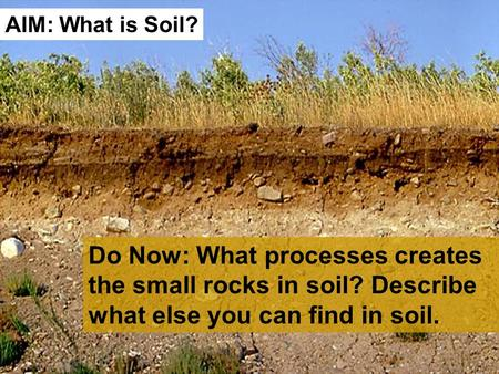 Do Now: What processes creates the small rocks in soil? Describe what else you can find in soil. AIM: What is Soil?