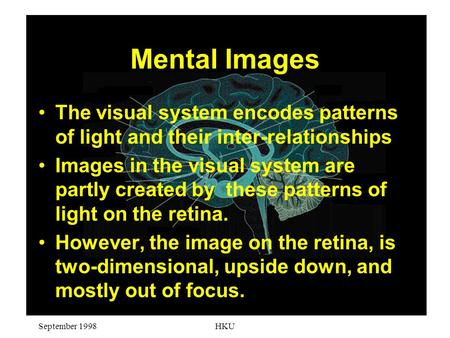 September 1998HKU Mental Images The visual system encodes patterns of light and their inter-relationships Images in the visual system are partly created.