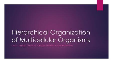 Hierarchical Organization of Multicellular Organisms CELLS, TISSUES. ORGANS, ORGAN SYSTEMS AND ORGANISMS.