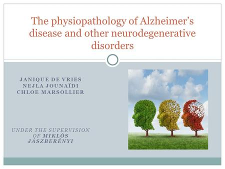 JANIQUE DE VRIES NEJLA JOUNAÏDI CHLOE MARSOLLIER UNDER THE SUPERVISION OF MIKLÓS JÁSZBERÉNYI The physiopathology of Alzheimer's disease and other neurodegenerative.