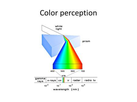 Color perception. Wrong representation wavelength sensibility.