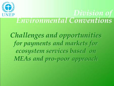 Division of Environmental Conventions Challenges and opportunities for payments and markets for ecosystem services based on MEAs and pro-poor approach.