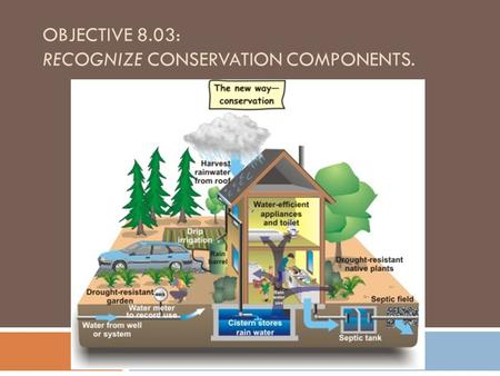 OBJECTIVE 8.03: RECOGNIZE CONSERVATION COMPONENTS.