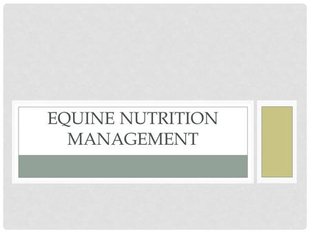 Equine Nutrition Management