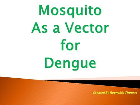 Mosquito As a Vector forDengue Created By Reynaldo Thomas.