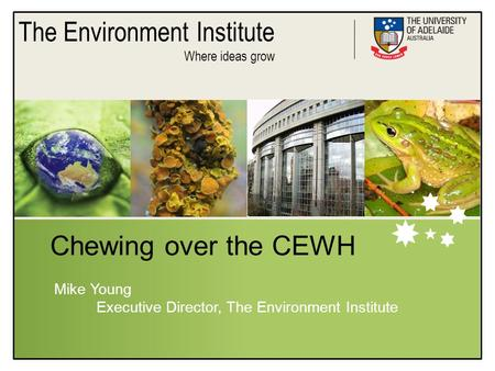 The Environment Institute Where ideas grow Chewing over the CEWH Mike Young Executive Director, The Environment Institute.