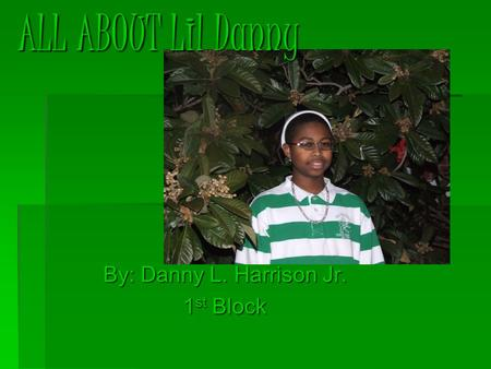 By: Danny L. Harrison Jr. 1 st Block ALL ABOUT Lil Danny.