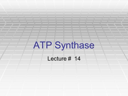 ATP Synthase Lecture # 14.