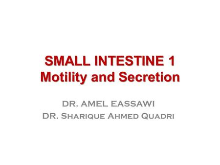 SMALL INTESTINE 1 Motility and Secretion DR. AMEL EASSAWI DR. Sharique Ahmed Quadri.