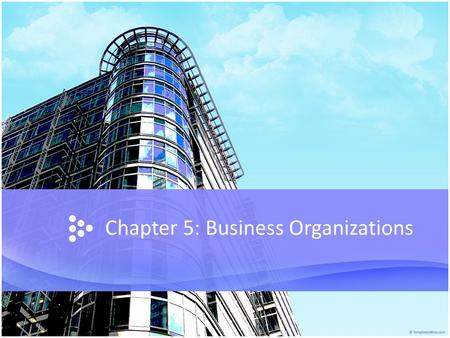 Chapter 5: Business Organizations