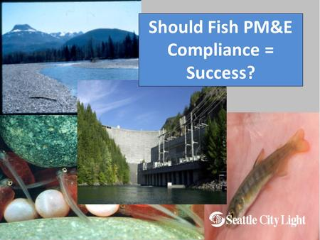 Should Fish PM&E Compliance = Success?. Skagit Project History  Relicensed 1995  18 Years of PM&E Implementation  30 Year License remains in effect.