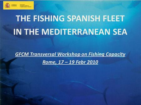 THE FISHING SPANISH FLEET IN THE MEDITERRANEAN SEA GFCM Transversal Workshop on Fishing Capacity Rome, 17 – 19 Febr 2010.