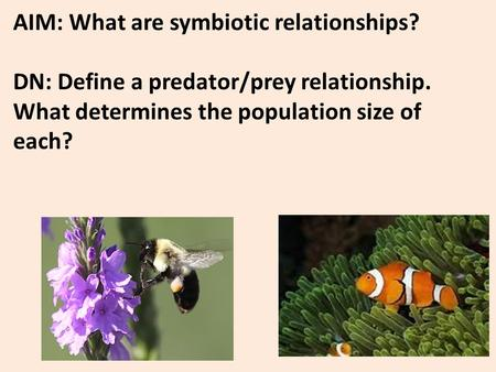 AIM: What are symbiotic relationships? DN: Define a predator/prey relationship. What determines the population size of each?
