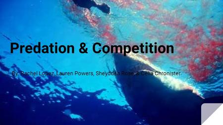 Predation & Competition By: Rachel Lopez, Lauren Powers, Sheydden Rose, & Celia Chronister.