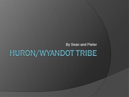 By Sean and Pieter. Where did they live?  The Huron Tribe lived in Southeast Michigan  Lived near Lake Huron  Not all of the Huron Tribe lived in Michigan.