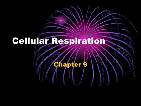 Cellular Respiration Chapter 9. As you already know… Respiration is the process by which energy is produced from sugar Respiration takes place inside.