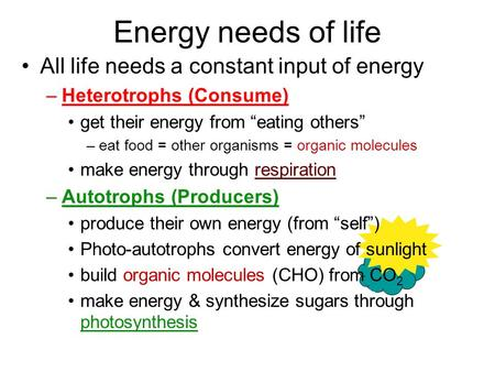 "Energy needs of life All life needs a constant input of energy –Heterotrophs (Consume) get their energy from ""eating others"" –eat food = other organisms."