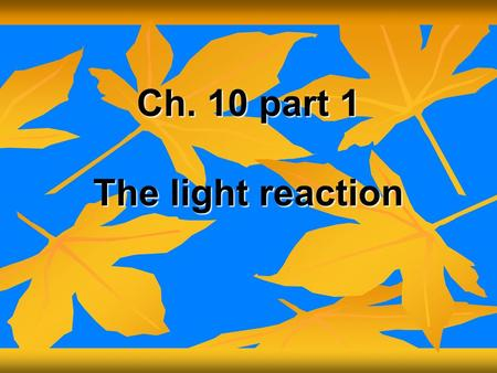 Ch. 10 part 1 The light reaction. I. Autotrophs- Organisms that make their own food (convert light energy to chemical energy) I. Autotrophs- Organisms.