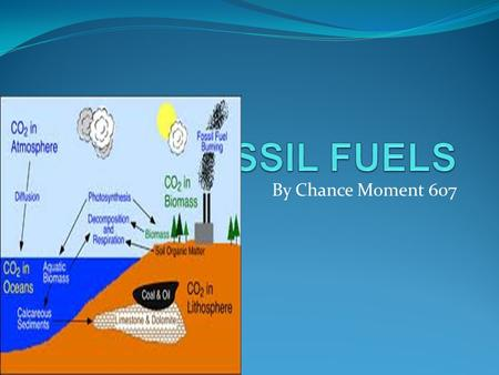 By Chance Moment 607. FOSSIL FUELS A hydrocarbonated deposite,such as petroleum,coal,or natural gas derived from living matter of a previous gologic time.
