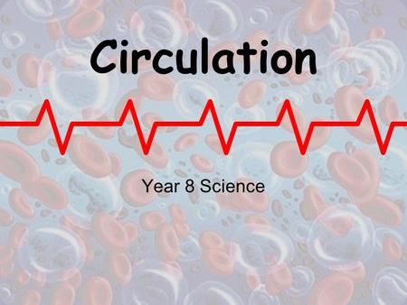 Circulation Year 8 Science. Blood The average human carries about 5 litres of blood in their body, which travels around what is known as the Circulatory.