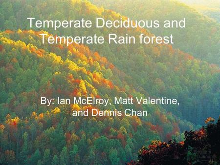 Temperate Deciduous and Temperate Rain forest By: Ian McElroy, Matt Valentine, and Dennis Chan.