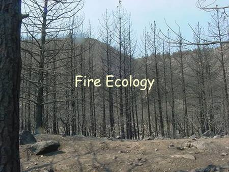Fire Ecology. Disturbance Defn: Force that shapes natural communities by altering resource allocation and changing structure of environment.