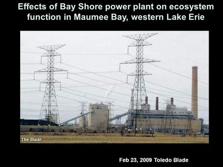Effects of Bay Shore power plant on ecosystem function in Maumee Bay, western Lake Erie Feb 23, 2009 Toledo Blade.
