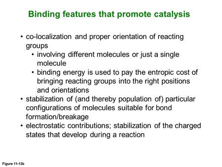 Figure 11-13b Binding features that promote catalysis co-localization and proper orientation of reacting groups involving different molecules or just a.
