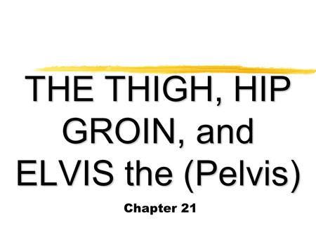 THE THIGH, HIP GROIN, and ELVIS the (Pelvis)