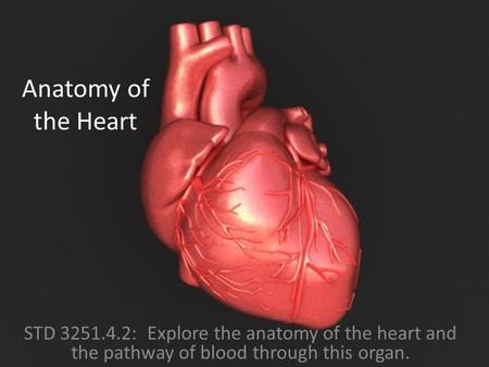 Anatomy of the Heart STD 3251.4.2: Explore the anatomy of the heart and the pathway of blood through this organ.