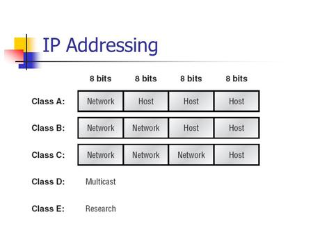 IP Addressing.