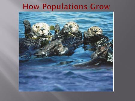 Characteristics of Populations Three important characteristics of a population are its:  geographic distribution  population density  growth rate.